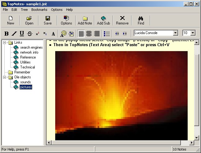 Click to view TopNotes 1.3.6.3 screenshot